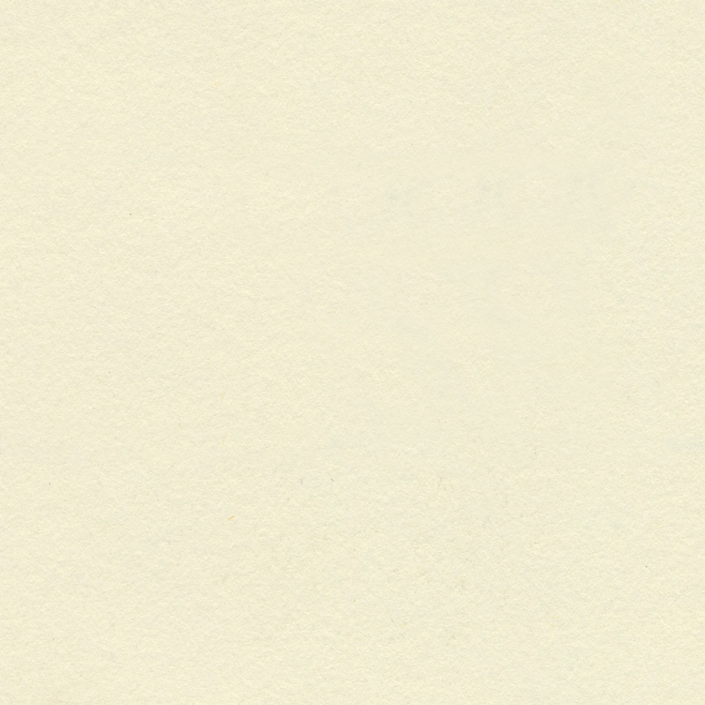 Cream - Ivory 150gsm