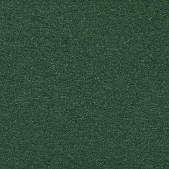 Pearlescent - Forest Green 120gs