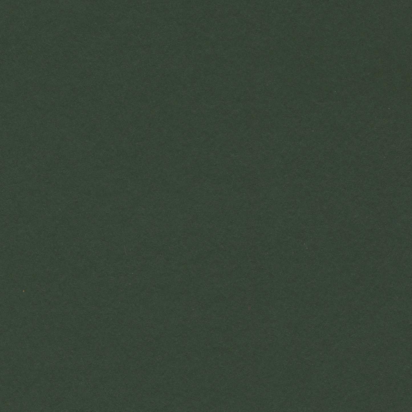 Dark green pantone pictures to pin on pinterest pinsdaddy for Dark sage green color
